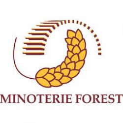 Minoterie Forest -